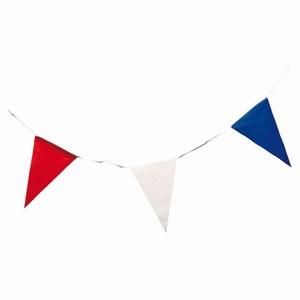 Vlaggenlijn 10 meter rood/wit/blauw